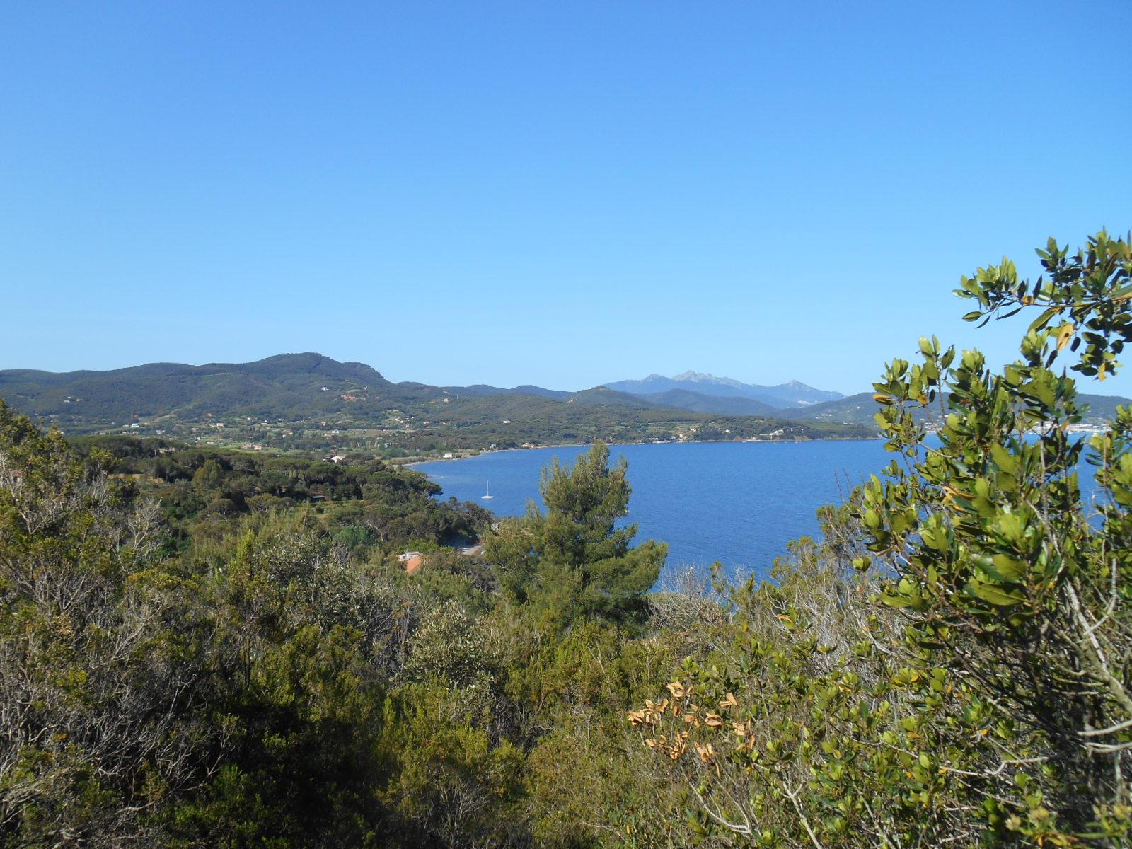 Het schitterende eiland Elba & Tuinieren in een pot