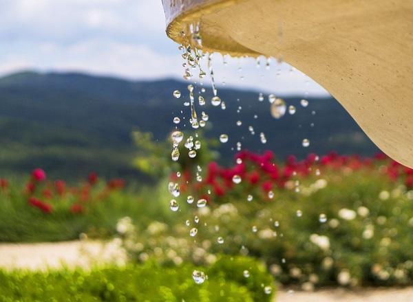 Water in de tuin en drie prachtige mediterrane planten